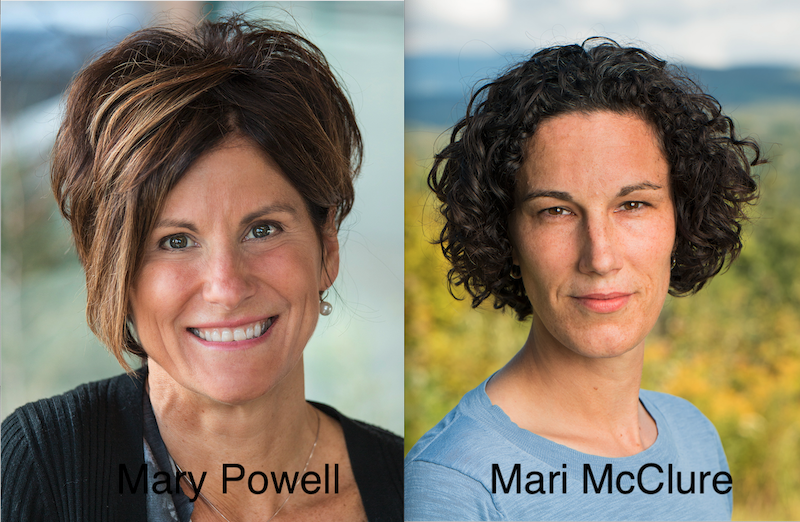 Mary Powell will be stepping down as CEO of GMP and McClure will replace her.